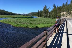 Leaving Yellowstone