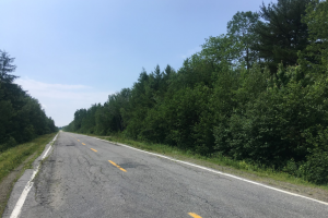 "Figure 12: Route 203 in inland Nova Scotia is nicknamed ""Nova Scotia's Loneliest Road."" In four hours of cyclist, I counted about a dozen cars."