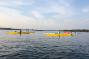 Figure 16: Kayaking the LaHave Islands on a calm Canada Day evening.