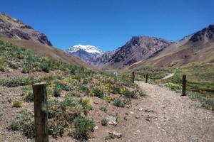 Above: The very beginning of the trail, in Horcones Valley. In the distance, Aconcagua!
